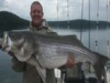 Beaver Lake Striper Fishing Guide Trophy